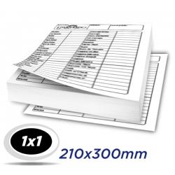 1.000 Fichas - 21 x 30cm Papel Off Set 240g - 1x1 cor - Produção 2 dias